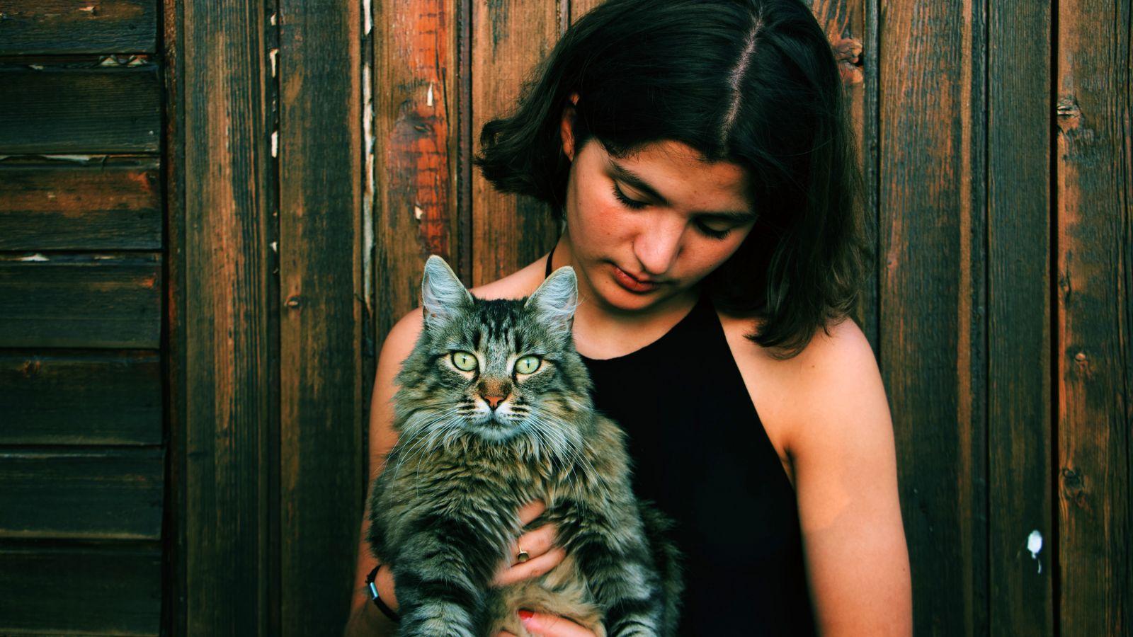 Κορονοϊός γάτες: Οι γάτες τελικά μπορούν να κολλήσουν κορονοϊό από τους ανθρώπους