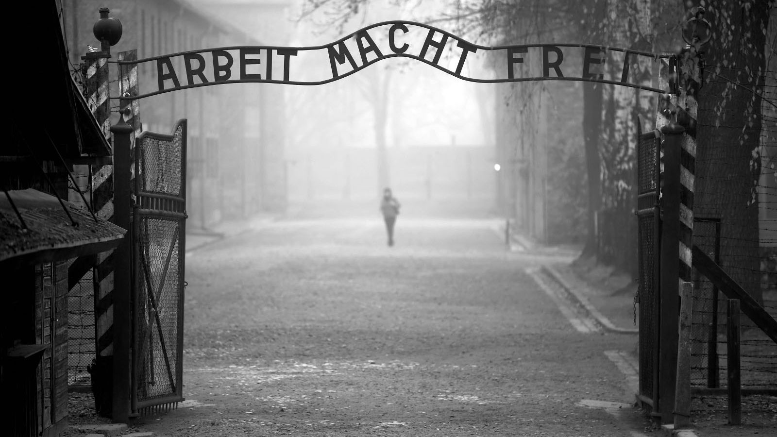 Διεθνής Ημέρα Μνήμης για τα Θύματα του Ολοκαυτώματος: «Ο καλύτερος φόρος τιμής είναι η δημιουργία ενός κόσμου ισότητας, δικαιοσύνης και αξιοπρέπειας»